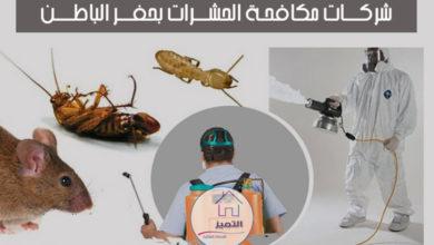 شركات مكافحة الحشرات بحفر الباطن