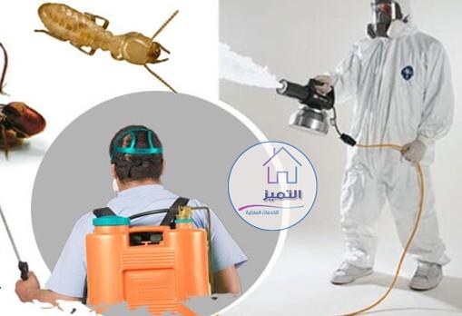 شركة مكافحة حشرات في خميس مشيط